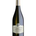 Pinot Grigio Villa Chiopris wino i przyjaciele