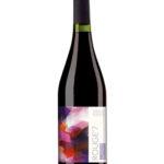 rouge7 winnice rymanow wino i przyjaciele