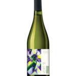 vert 8 winnice rymanow wino i przyjaciele